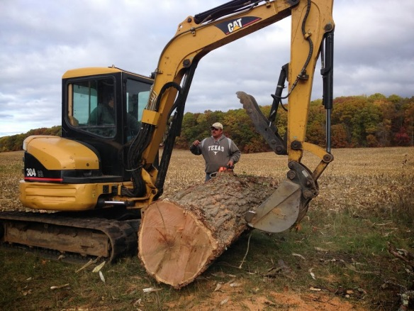 20131026 Woodcutting- 5backhoe