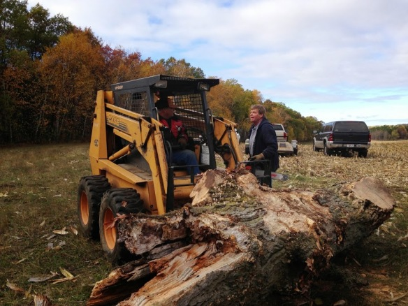 20131026 Woodcutting- 5skidsteer